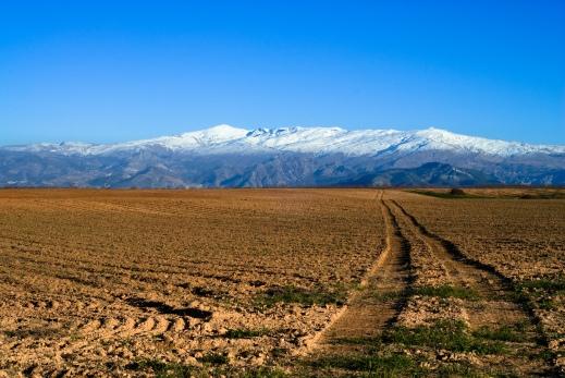 Sierra_Nevada_(Spain) (1)